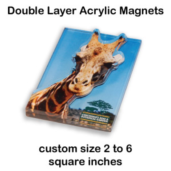 Double Layer Clear Acrylic Magnets